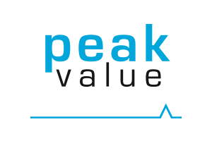 Partner_0013_Peak-value